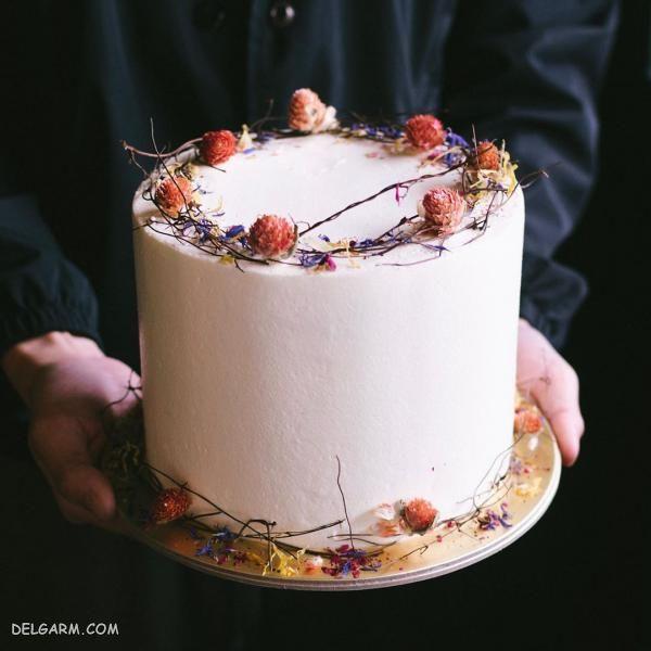 عکس های کیک تولد مهر ماهی ها