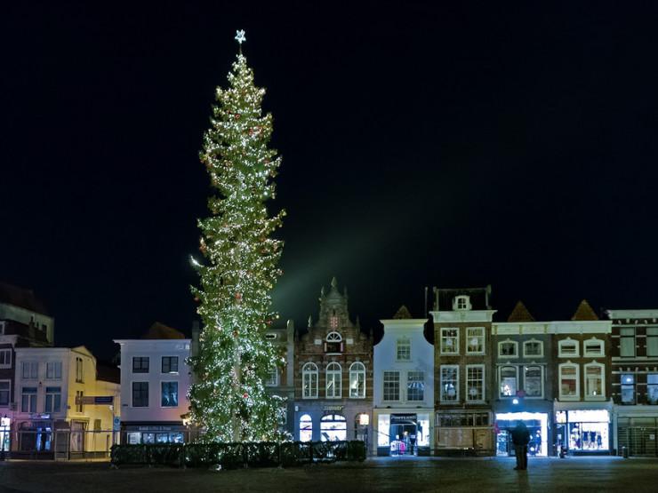 درختان باشکوه کریسمس