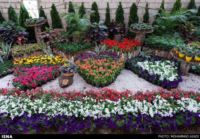 نمایشگاه گل و گیاه در محلات