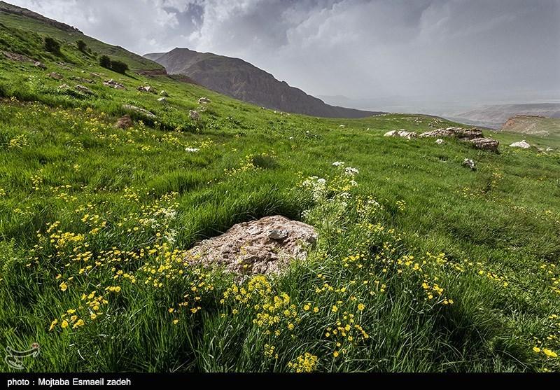 سرزمین مادری  -  آذربایجان غربی  مجتبی اسماعیلزاده  ۰۲ فروردين ۱۳۹۷ - ۱۹:۳۴