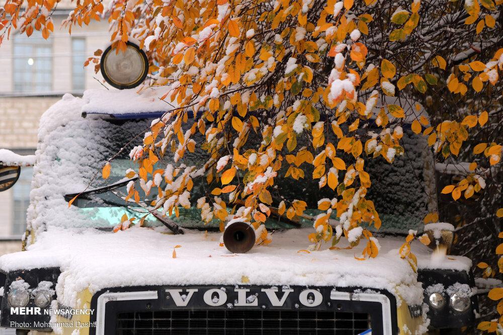 تصاویر بارش برف پائیزی در اردبیل