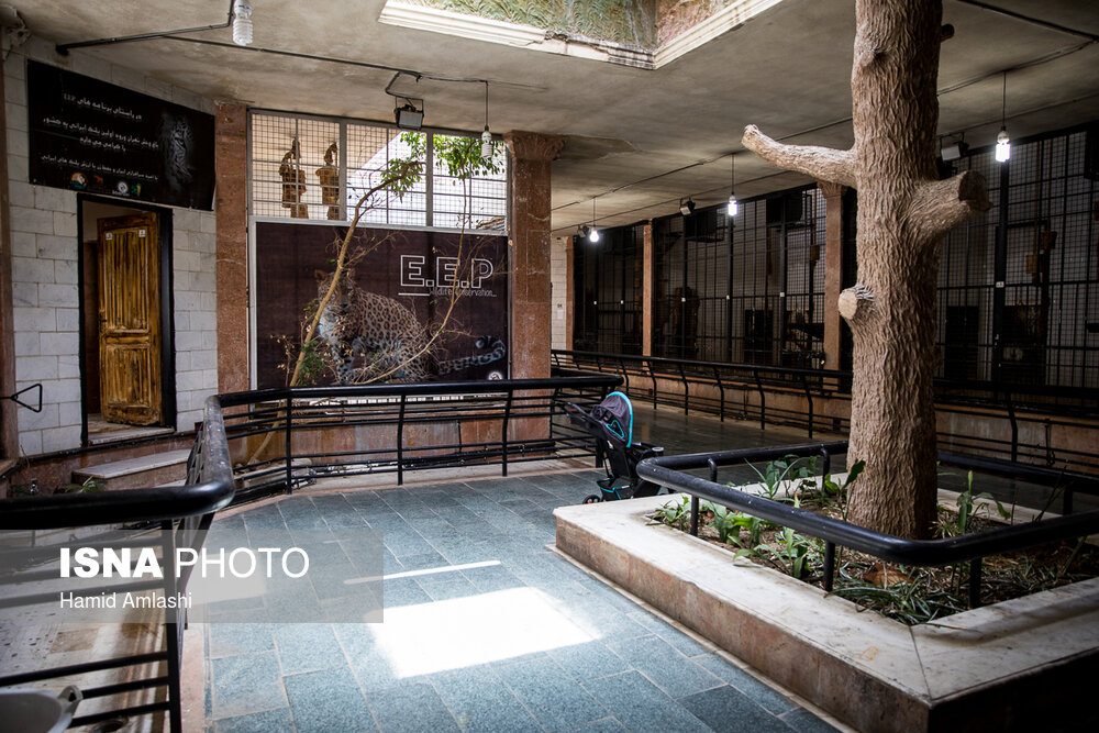 تصاویر باغ وحش ارم تهران | اردیبهشت ۹۸