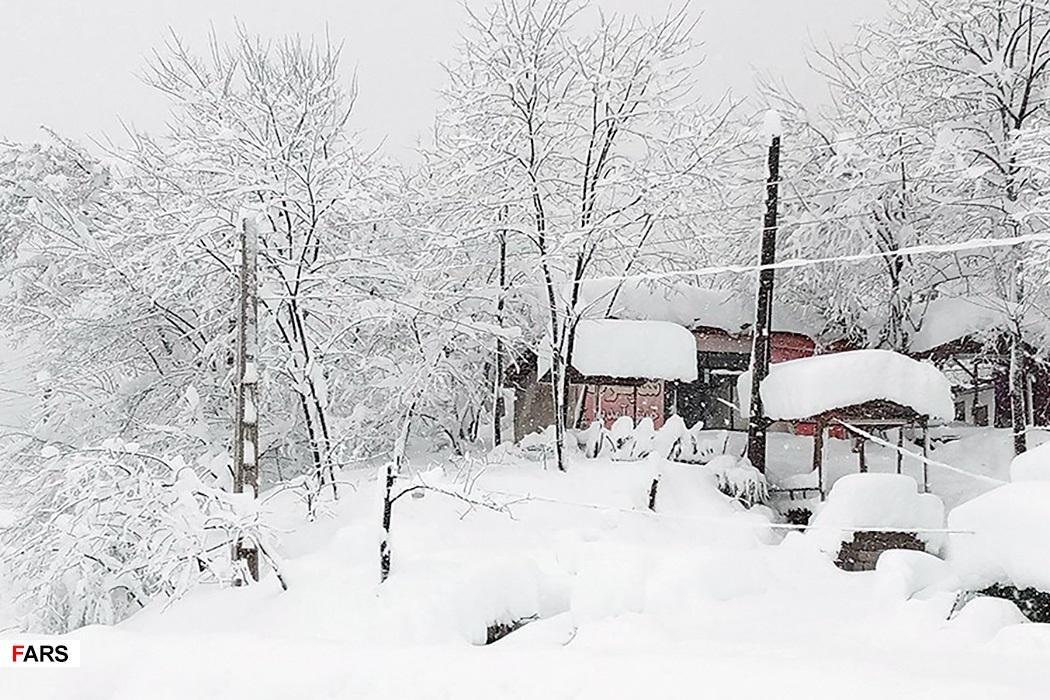 عکس های بارش برف در شهر و جاده های گیلان