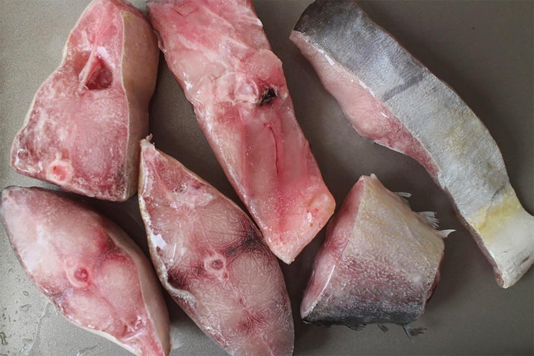 استیک ماهی شیر بندر ( سارم )