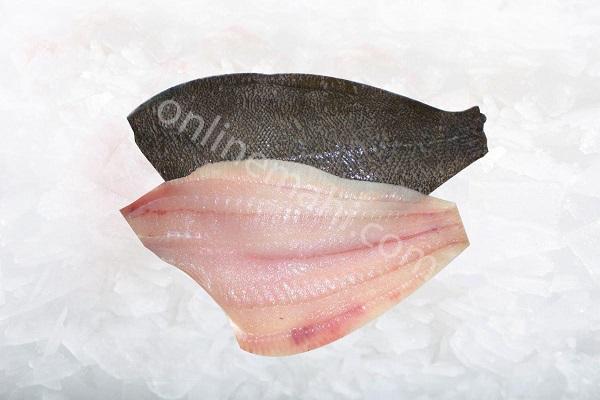 ماهی فلاندر ( کفشک ) فیله شده