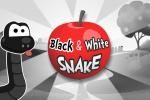 بازی مار سیاه و سفید