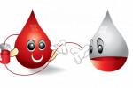 ۳۲ متن و پیام جدید به مناسبت روز جهانی اهدای خون