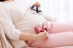 بارداری دوقلو / چگونه دو قلو باردار شویم ؟