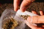 شایعترین مخدرهای مصرفی در ایران کدامند ؟