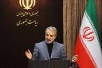 عیدی سخنگوی دولت به خبرنگاران به مناسبت ولادت امام رضا(ع) + فیلم
