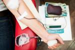 همه چیز درباره شرایط لازم برای اهدای خون