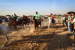 تصاویر مسابقات اسبدوانی پاییزه در سوسنگرد