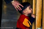 نماهنگ پنجره فولاد همراه با تصاویر زیبایی از حرم امام رضا