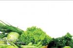 مواد غذایی و میوه های مخصوص کاهش سریع قندخون