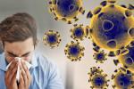 آیا ویروس کرونا در فصل گرما از بین میرود ؟