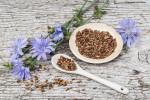 فواید و عوارض استفاده از ریشه کاسنی در طب سنتی
