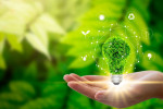 گلچین شعر روز جهانی محیط زیست