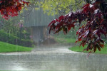 27 کد آوای انتظار همراه اول درمورد باران
