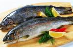 گرانی ماهی در آستانه شب یلدا