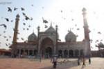 رحلت فقیه جلیل سیدالعلماء عالم شیعی هندوستان(1307 ق)