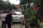 عکس های دیدنی امروز/تصاویر خبری روز سه شنبه 13 خرداد 1393