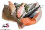 شناسایی و پاک کردن ماهی تازه