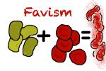 بیماری فاویسم(Favism)یا حساسیت به باقلا