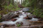 عکس های آرام بخش و زیبا از طبیعت