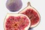 انجیر، میوهای که بوی بد دهان را برطرف میکند