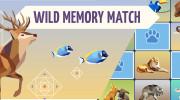 بازی کارت حافظه ای حیات وحش