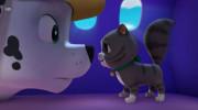 انیمیشن سریالی سگهای نگهبان قسمت ۱۳