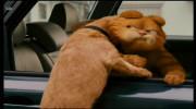 انیمیشن گربه گارفیلد با دوبله فارسی