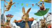 انیمیشن سینمایی پیتر خرگوشه ۲ با زیرنویس فارسی