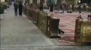 کلیپ پیشاپیش تولد امام رضا مبارک