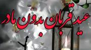 کلیپ عید قربان بدون مادر
