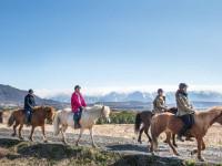 اسب درمانی و ۹ مزیت طلایی سوار کاری
