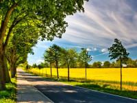 شعر تابستان | زیباترین شعرهای طنز و کودکانه درباره تابستان