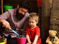 ۱۶ نکته قابل توجه در تربیت فرزند پسر
