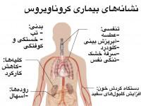 علائم و نشانه های کرونا به چه ترتیبی ظاهر می شوند ؟