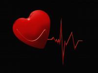 شعر با واژه دل | زیباترین اشعار در وصف دل