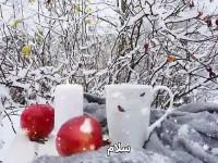 30 متن و پیام دلنشین و احساسی صبح بخیر زمستانی