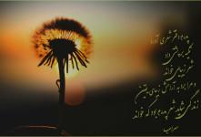 شعر برای پدر : ۵۴ شعر زیبا در وصف پدر | روز پدر مبارک