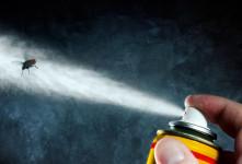 معرفی انواع حشره کش های شیمیایی خانگی + عوارض و نحوه مصرف