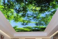 با سقف آسمان مجازی، طبیعت را به خانه بیاورید!