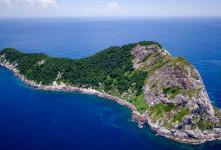 دانستنی های ترسناک از جزیره مارها در برزیل