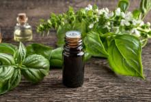 نسخه های درمانی روغن ریحان در طب سنتی + ۵۲ خواص