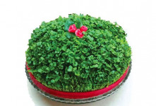 آموزش کاشت ۲ نوع سبزه عید با تخم شربتی خاص و زیبا