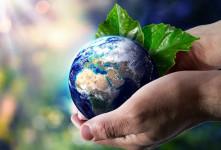 ۵ انشا با موضوع چرا باید از طبیعت مراقبت کنیم ؟