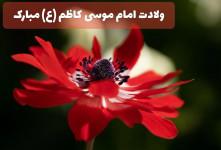 ۱۵ شعر ناب و خاص ویژه ولادت امام موسی کاظم (ع)