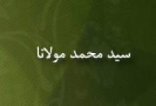 رحلت علامه سیدمحمد مولانا عالم و مؤلف(۱۳۶۳ ق)